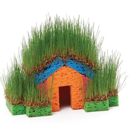 После того как посеете газонную траву